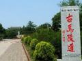 聊城莘县马陵道古战场旅游指南